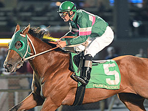 Private Prospect wins the 2014 Prairie Meadows Juvenile Mile.
