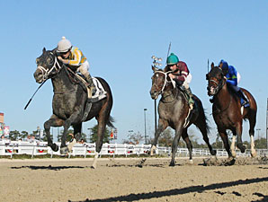 Prospective wins the 2012 Delta Mile.