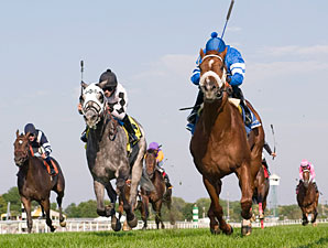 Public Speaker wins the 2009 Sea O'Erin.