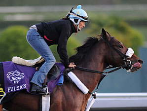 Pulsion at the 2009 Breeders' Cup