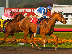 Pure Fun wins the 2012 Hollywood Starlet.