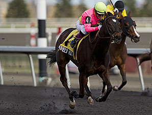 Purely Hot wins the 2014 Whimsical Stakes.