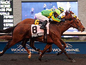 Pyrite Mountain wins the 2012 Kingarvie Stakes.