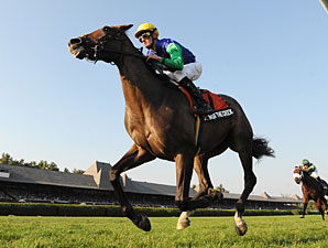 Queen of the Creek wins the 2010 Riskaverse.