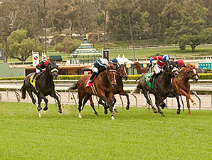 Quick Casablanca wins the 2014 Last Tycoon.