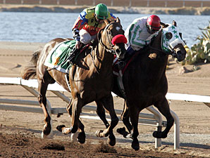 Quiet Again wins the 2010 Bill Thomas Memorial Stakes.