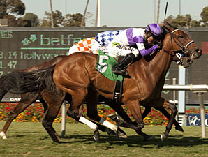 Quiet Oasis wins the 2012 Royal Heroine Mile.