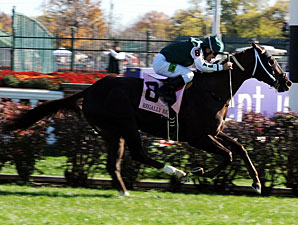 Regally Ready in the 2011 Breeders' Cup Turf Sprint.
