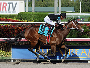 R Free Roll wins the 2014 Hollywood Beach Stakes.