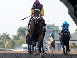 R Heat Lightning wins the 2011 Gulfstream Oaks.