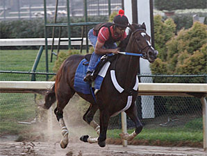 Rachel Alexandra works at Churchill Downs on June 28, 2010.