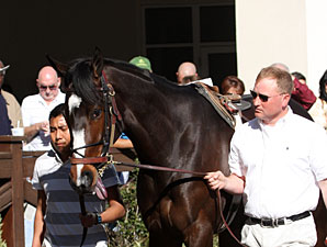 Rachel Alexandra schools at Fair Grounds on March 6, 2010.