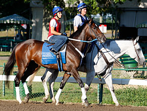 Rachel Alexandra schools at Monmouth on July 22, 2010.