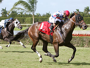 Racing Aptitude wins the 2010 Arthur Appleton Juvenile Turf.