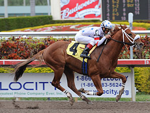 Radiohead wins an allowance race at Gulfstream Park on February 27, 2010.