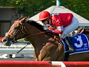 Rahystrada wins the 2010 Arlington Handicap.