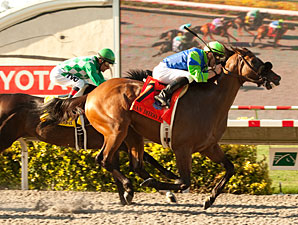 Rail Trip wins the 2012 San Diego.
