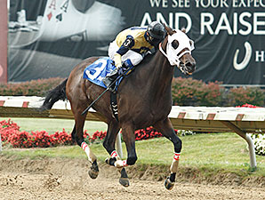 Raise the Reward wins the 2013 Best of Ohio Endurance Stakes.