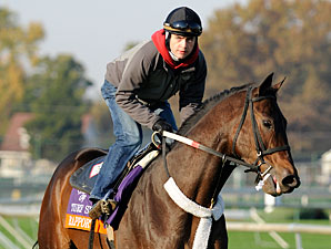 Rappport at Churchill Downs, Oct 29, 2011