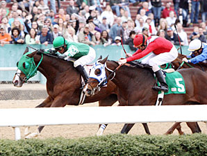 Rattlesnake Holler wins the 2011 Rainbow Stakes.