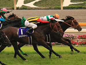 Real Impact wins the 2011 Yasuda Kinen.