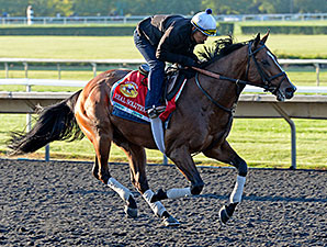 Real Solution - Arlington Park, August 2014.