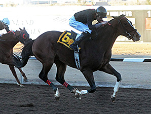 Rebranded wins the Riley Allison Futurity.