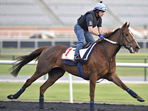 Red Cadeaux - Dubai, March 26, 2013
