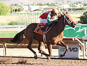 Red Zeus wins the 2012 Arizona Breeders' Futurity (Colts and Geldings).
