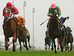 Regal Conqueror wins the 2014 Ontario Damsel Stakes.