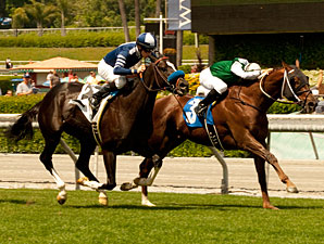 Regally Ready wins the 2011 San Simeon.