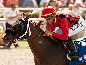 Reneesgotzip wins the 2012 C.E.R.F. Stakes.