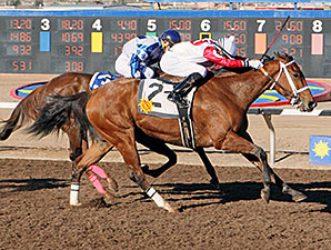 Renewed Vows wins the New Mexico State Racing Commission Handicap.
