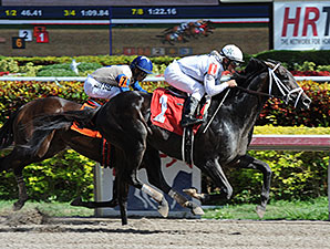 Revolutionary wins an Allowance/Optional Claiming Race on January 11, 2014.