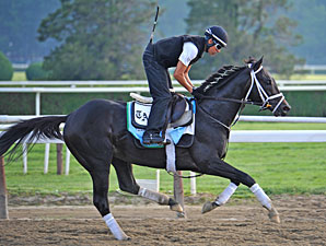 Revolutionary - Belmont Park, June 6, 2013.