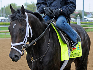 Revolutionary returning from the track at Churchill Downs 4/28/2013.