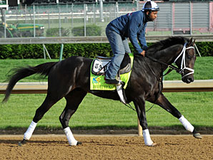 Revolutionary - Churchill Downs, May 2, 2013.