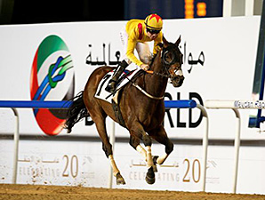 Reynaldothewizard wins the 2015 Dubawi Stakes.