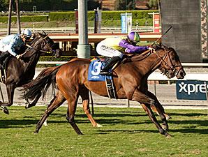 Rhagori wins the 2014 Swingtime Stakes.