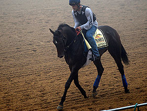 Ria Antonia jogs at Pimlico May 15.