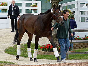 Ria Antonia arrives at Pimlico on May 14, 2014.