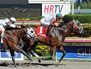 Ribo Bobo wins the Caixa Eletronica Stakes.