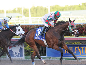 Ribo Bobo wins the 2014 Florida Sunshine Millions Sprint.