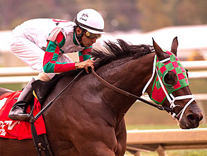 Ribo Bobo wins the Maryland Million Sprint Handicap.