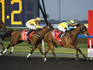 Rich Tapestry wins the 2014 Mahab Al Shimaal.