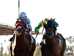 Rich Tapestry wins the 2014 Santa Anita Sprint Championship.