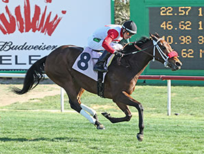 Ricspretentiousgal wins the 2014 Glendale Handicap.