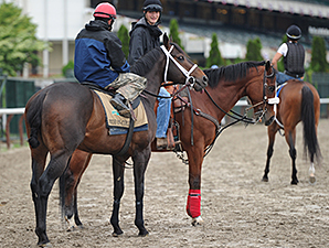Ride On Curlin - Belmont Park, May 24, 2014.