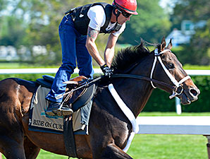 Ride On Curlin works at Belmont Park June 1.