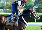 Ride On Curlin breezes at Belmont June 1, 2014
